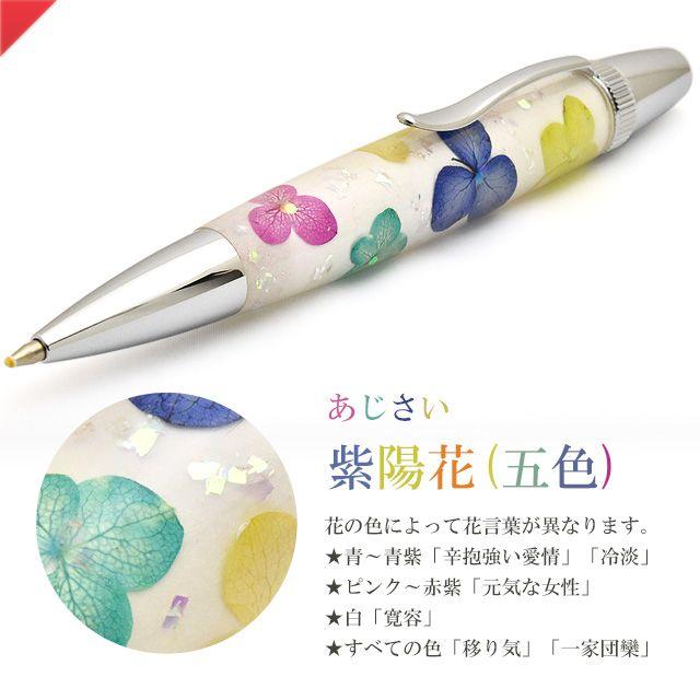 紫陽花/あじさい(五色)