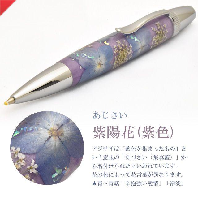 紫陽花/あじさい(紫色)